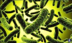Дисбактериоз у детей 3