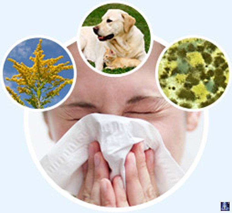 лечение аллергии крапивницы народными средствами