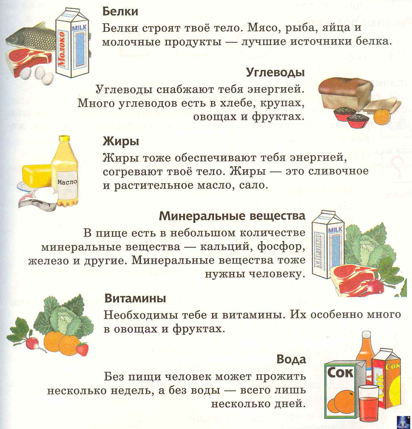 Рецепты для раздельного питания для похудения на неделю